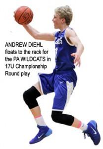 19-ANDREW-DIEHL