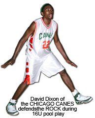 24-David-Dixon-Chicago-Cane